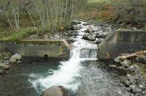 堤体の一部が魚が上れるようにV字型にけずる細工が施されている。だが、砂利はしっかりと止められたままである。だから国道が護られているのだと言われるかも知れないが、むしろ治山ダムで石をせき止めることで川は不安定さが続くことになる。その証拠を上流で見ることができる。