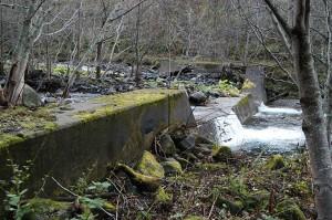少し上流にも治山ダムがあった。