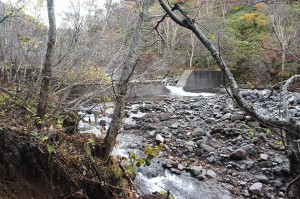 またまた、治山ダムがあった。
