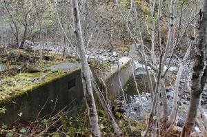 治山ダムに近づいてみた。