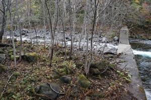 砂利で一杯になっている。治山ダムの堆砂域の流れが対岸を削っているのがお分かりいただけると思う。こおからも泥が発生するわけだ。