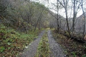 ヒグマと遭遇しそうな林道を上っていった。途中、林道は土砂で埋もれていたが、なんとか上り詰めることができた。