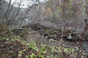 大量の土砂に埋もれた治山ダム。