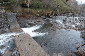 またまた、治山ダムが。治山ダムの下流の川岸を見ていただきたい。崩れていることがお分かりいただけると思う。