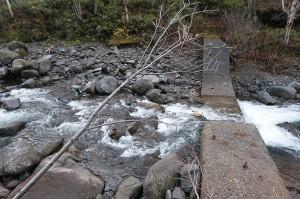 この治山ダムも砂利で満杯になっている。