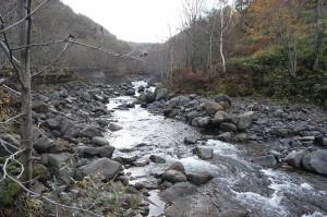 上流にも治山ダムが見える。川底が掘り込まれて下がっていることがお分かりいただけると思う。また、砂利を人為的に左右に避けているようだ。