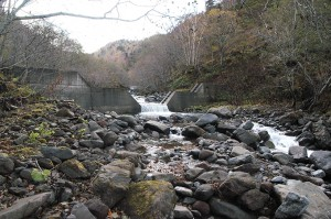 さらに治山ダムが。