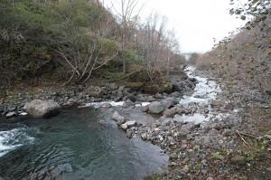 さらに治山ダムがあった。その下流を見た。