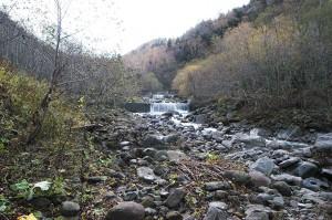 さらに上流に治山ダムが見える。
