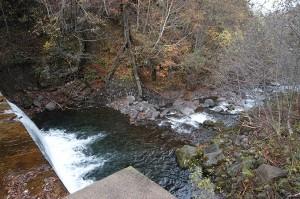 この治山ダムの下流。