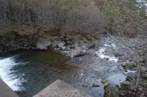 この治山ダムから下流を見た。
