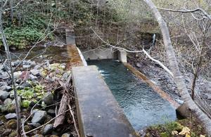 主ダム+副ダムの二段構えの立派な治山ダムである。