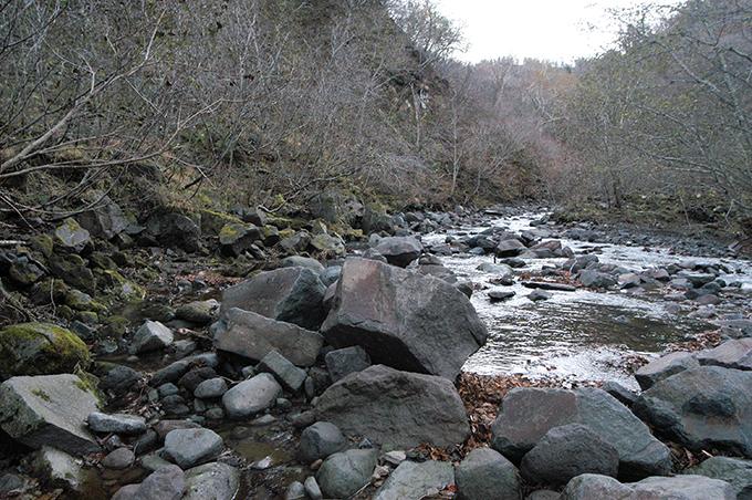 この治山ダムの上流を見る。上流にはもう治山ダムは無いと思われる。左手の川岸が浸食されているのは、治山ダムに貯まった砂利が流れを押し上げたために、増水時に浸食したと思われる。