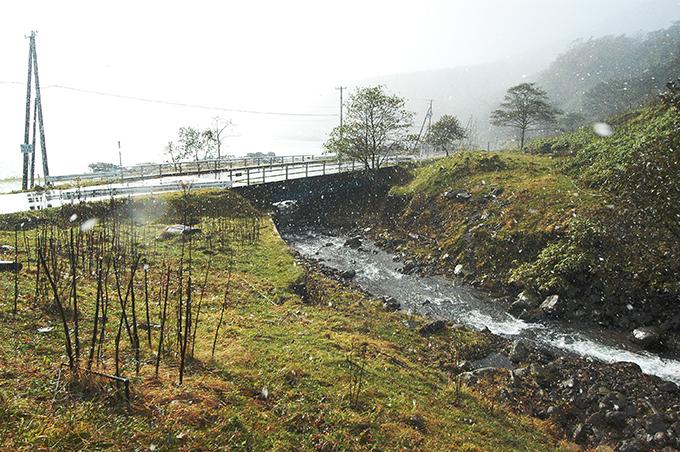 この川は、治山ダムのすぐ下流に国道があり、海に注いでいる。道路に水が溢れ出すのが問題なら、橋の間口を広く取ればよいと思うのだが…