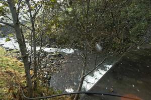治山ダム直下。どこのダムでも同じことだが、川底が下がり、川岸が崩れている。