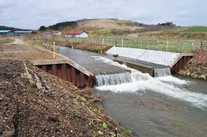 2010-04-30・加工済・山崎川・完成したばかりの魚道の下流の様子・DSC_0181