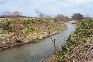2010-04-30・加工済・山崎川・完成したばかりの魚道の下流の様子・DSC_0199