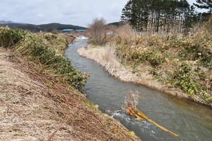 2010-04-30・加工済・山崎川・完成したばかりの魚道の下流の様子・DSC_0200