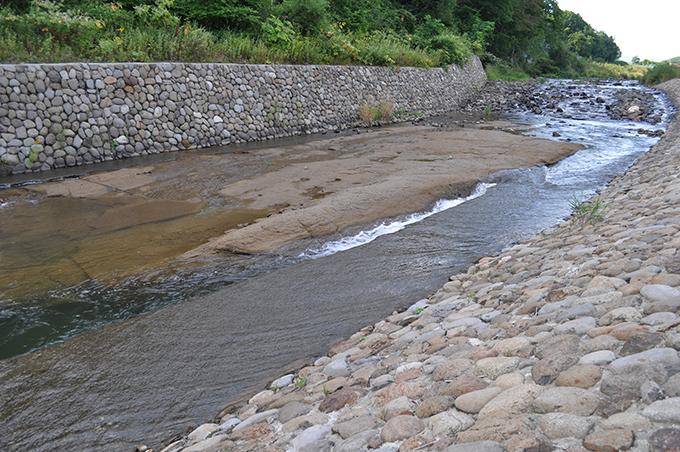 露出した岩盤は「札幌軟石」と呼ばれる軟弱な岩質だから、簡単に浸食される。浸食され水位がさがったために、川底だった岩盤が水面から出てしまっている。