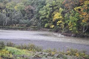 2010-10-04・加工済・鵡川・占冠村近く・DSC_0761