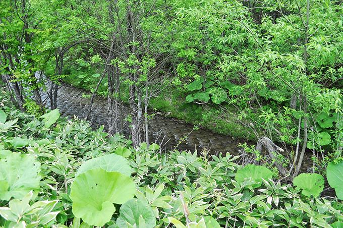 川はコンクリートブロックの三面バリになっている。また、河床に敷き詰められたコンクリートブロックには突起があり、流れてきた砂利が止まるようになっている。