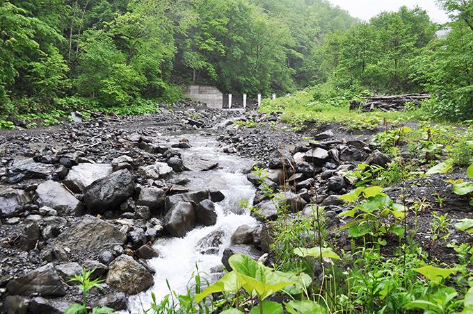 案の定、上流に治山ダムが見えてきた。川岸の段差は河床低下の特徴であり、治山ダムか、砂防ダムがある証拠と考えて良い。