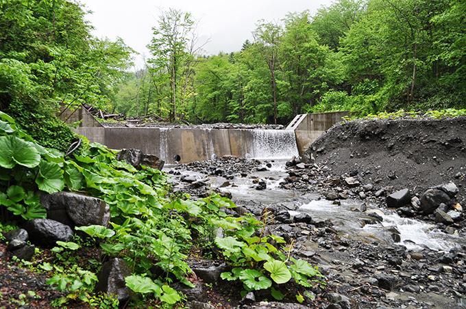 鋼鉄製アングルダムの上流にコンクリート製の治山ダムがあった。川岸の段差をしっかりと見ていただきたい。