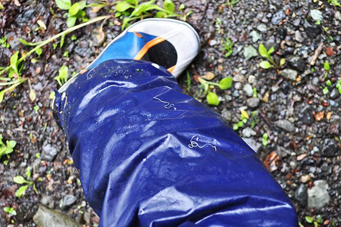 川に出るのに藪こぎをしたら、連コートのズボンに線虫がたくさんひっついた。カマキリに寄生するハリガネムシだろうか…?