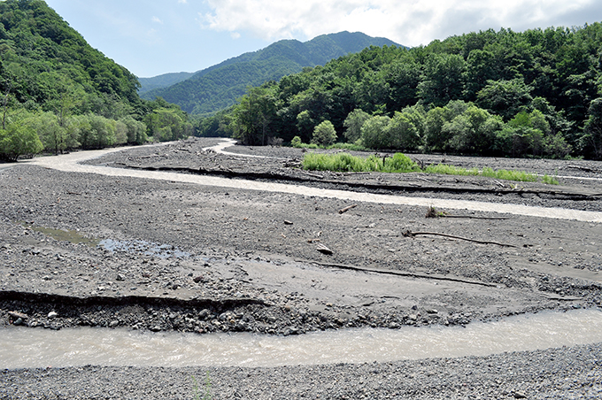 2011-07-19・加工済・DSC_0860