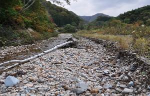 2011-10-16・加工済・八木川・DSC_0555