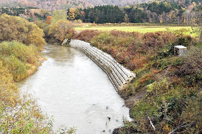 崩れた川岸はコンクリートの護岸にされていた。