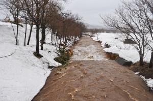 雪解けのちょっとした増水でもひどい泥水となる。