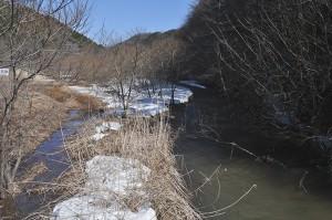 砂防ダムの堆砂域が上流へと広がっている。まるで湿地帯のようだ。