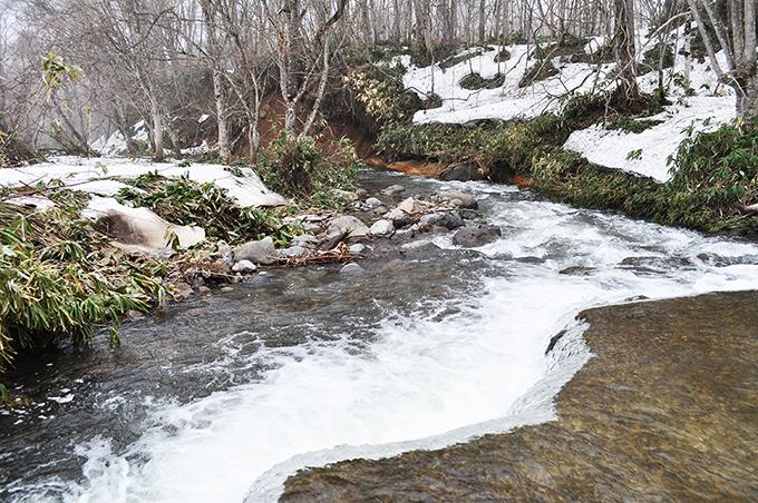 河床路の下流側では川底が下がり、川岸や川に面した斜面がズリ落ちたりしている。
