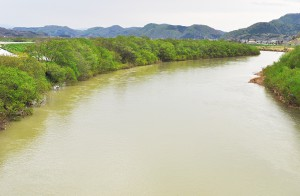 2012-05-06・加工済・厚沢部川・河畔林伐採・DSC_0202