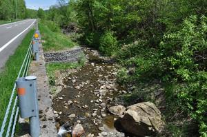 2012-05-24・加工済・沙流川水系中の沢川・DSC_0565