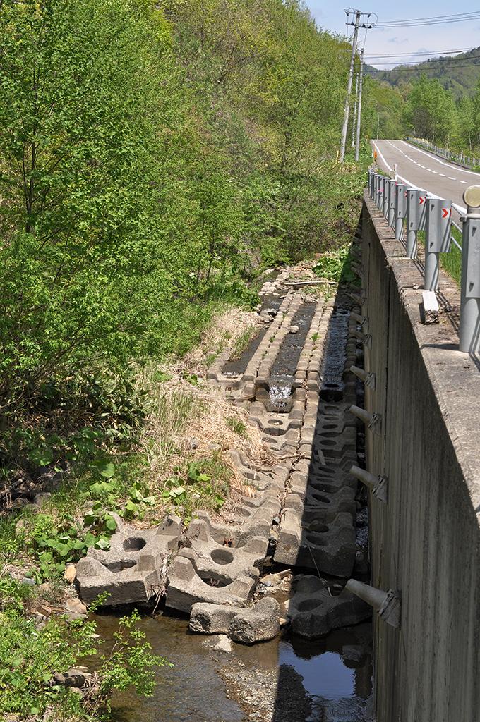 2012-05-24・加工済・沙流川水系中の沢川・DSC_0578
