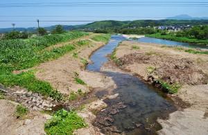 2012-06-03・加工済・厚沢部川・市街地付近の河畔林伐採後・DSC_0180
