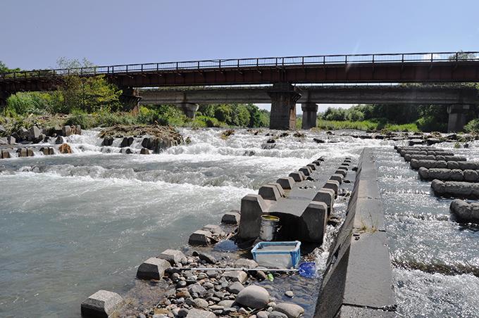 2012-08-12・加工済・野田追川・JR橋・落差工・DSC_0210