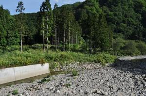 2012-09-08・加工済・見市川支流二股川・DSC_0079