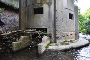 2012-09-08・加工済・見市川支流二股川・DSC_0379