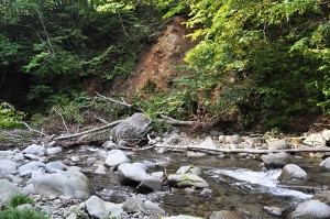 2012-09-08・加工済・見市川支流二股川・DSC_0441