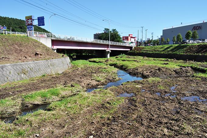 2012-10-02・加工済・北の沢川・DSC_0363
