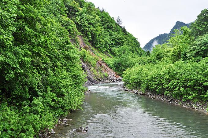 2013-06-18・加工済・千露露川・DSC_0025
