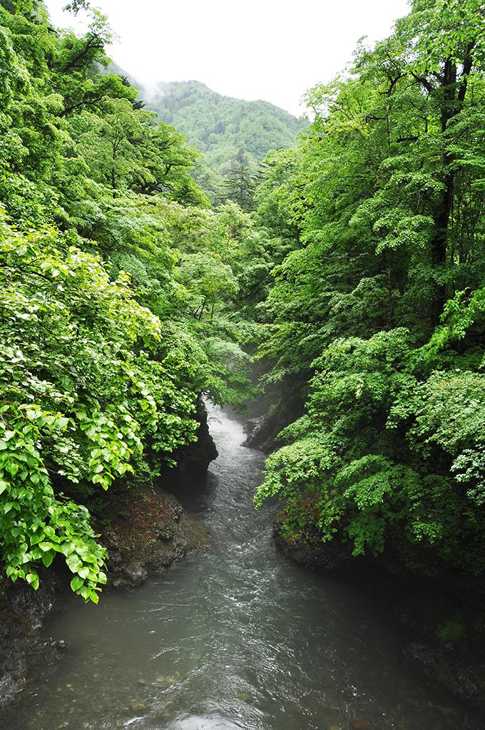 2013-06-18・加工済・千露露川・DSC_0157