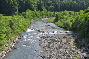スリット式ダムと鋼鉄製アングルダムの下流数百メートルの地点だが、砂利が流れてこなくなったので、岩盤が露出している。