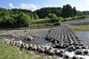 取水堰の下流では川底が下がり、川岸が引き倒されるように崩壊が拡大している。