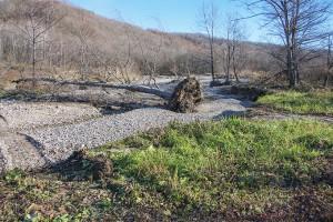2013-11-13・加工済・居辺川・DSC_0419