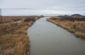 湿地のような低地帯を流れ、日本海に注いでいる。