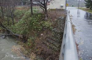 2013-11-20・加工済・茂築別川・DSC_0043